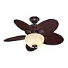 closeout ceiling fan