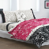 closeout dkny bedding
